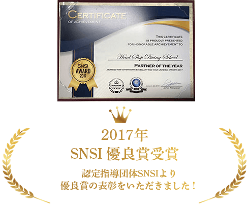 2017年 SNSI優良賞受賞